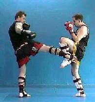 2005 Combat Sports Camp Vol 1