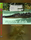 Mostly Dark - Single Channel - Nancy Buchanan