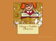 Things a Toddler Observes