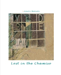 Lost In The Chamiso
