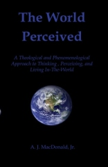 The World Perceived