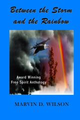 Between The Storm And The Rainbow
