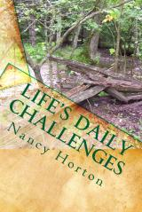 Life's Daily Challenges