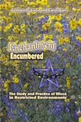 Enchantment Encumbered