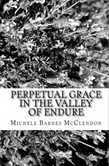 Perpetual Grace in the Valley of Endure