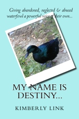 My Name is Destiny...