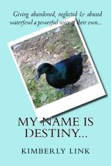 My Name is Destiny...