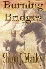 Burning Bridges