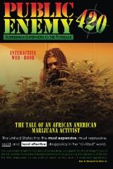 Public Enemy #420