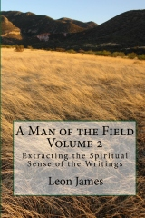 A Man of the Field, Volume 2: Extracting the Spiritual Sense of the Writings