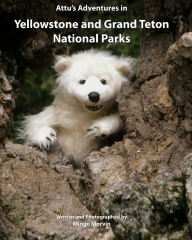 Attu's Adventures in Yellowstone and Grand Teton National Parks