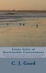 Little Gifts of Sustainable Contentment