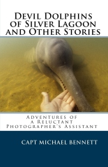 Devil Dolphins of Silver Lagoon and Other Stories