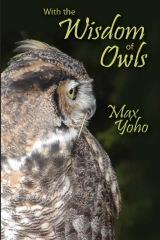 With the Wisdom of Owls