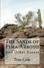 The Sands of Pima Arroyo
