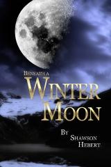 Beneath a Winter Moon