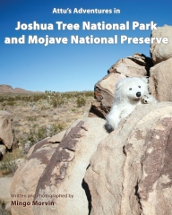 Attu's Adventures in Joshua Tree National Park and Mojave National Preserve