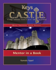 Keys to the CASTLE: Mentor in a Book