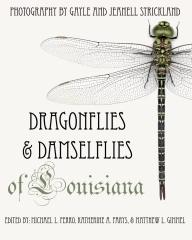 Dragonflies and Damselflies of Louisiana
