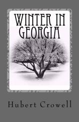 Winter In Georgia