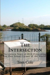 The Intersection