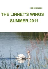 The Linnet's Wings Summer 2011