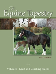 The Equine Tapestry