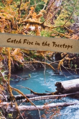 Catch Fire in the Treetops