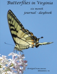 Butterflies in Virginia