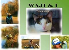 Waji & I This is Waji