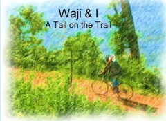 Waji & I A Tail on the Trail