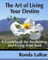 The Art of Living Your Destiny