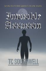 Invisible Assassin
