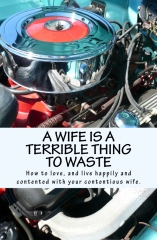 A Wife Is A Terrible Thing To Waste