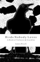 Birds Nobody Loves