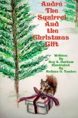 Andre the squirrel and the Christmas gift