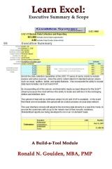 Learn Excel: Executive Summary & Scope