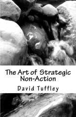 The Art of  Strategic Non-Action
