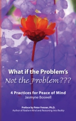 What If the Problem's Not the Problem???