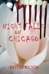 Night Falls on Chicago