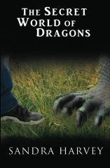 The Secret World of Dragons