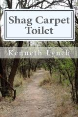 Shag Carpet Toilet