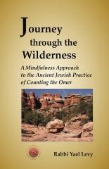 Journey Through the Wilderness