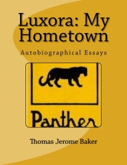 Luxora: My Hometown