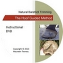 The Hoof Guided Method Instructional Video