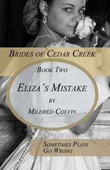 Eliza's Mistake