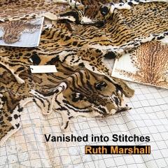 Vanished into Stitches