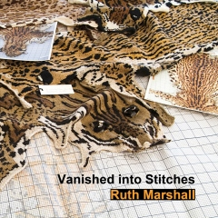 Vanished into Stitches