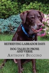 Retrieving Labrador Days