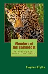 Wonders of the Rainforest